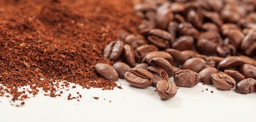 caffe arabica